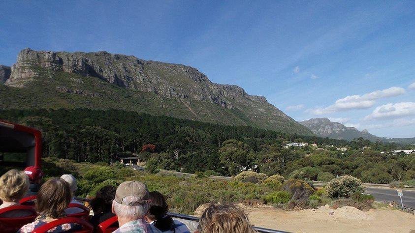 On the Cape Peninsula Tour