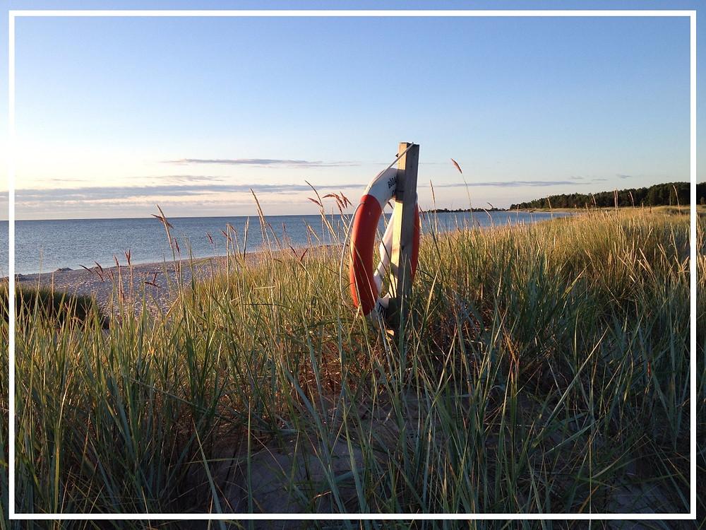 Beach view at Öland: Photo by gladatony on Pixabay
