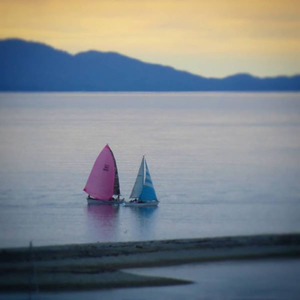 Yachts in the bay at Nelson NZ