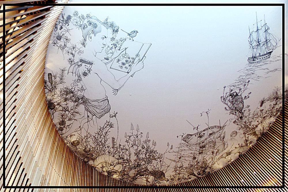 The ceiling inside Brisbane City Library, Australia