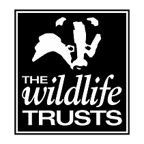 Logo for The Wildlife Trusts