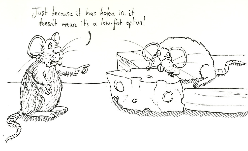 mice eating cheese cartoon illustration