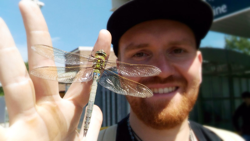 Man with dragon fly on his finger, UK