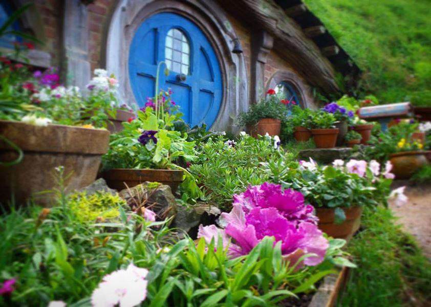 Hobbit house in Hobbiton, Matamata