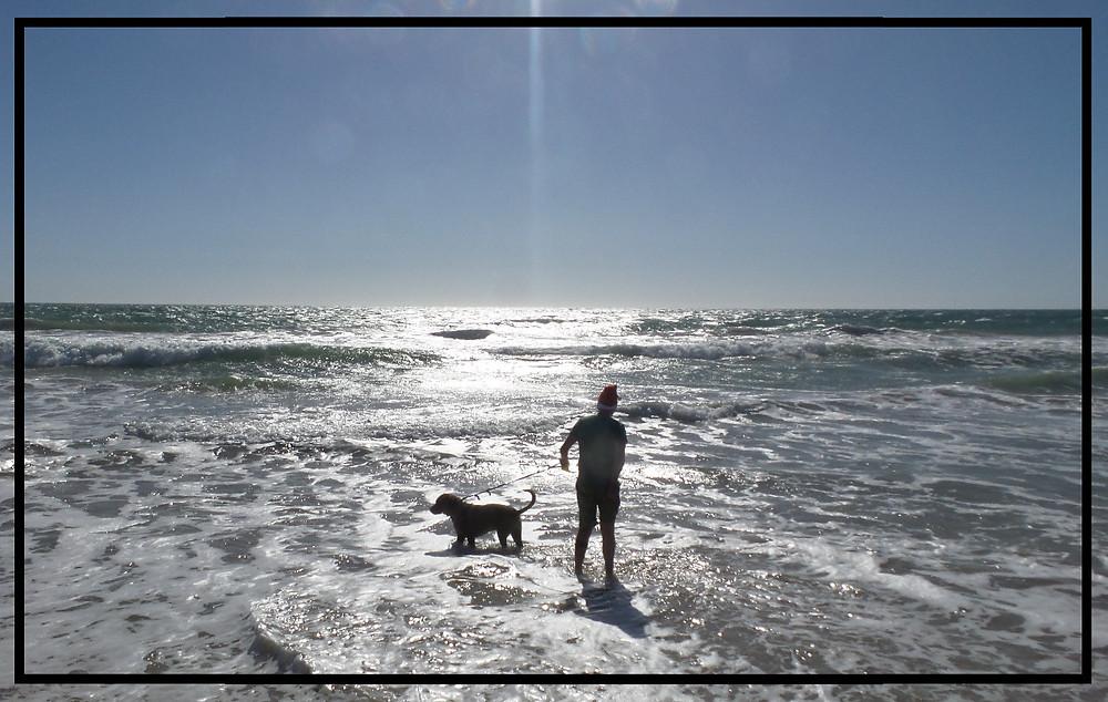 Walking Humphrey in Golden Bay, Perth WA