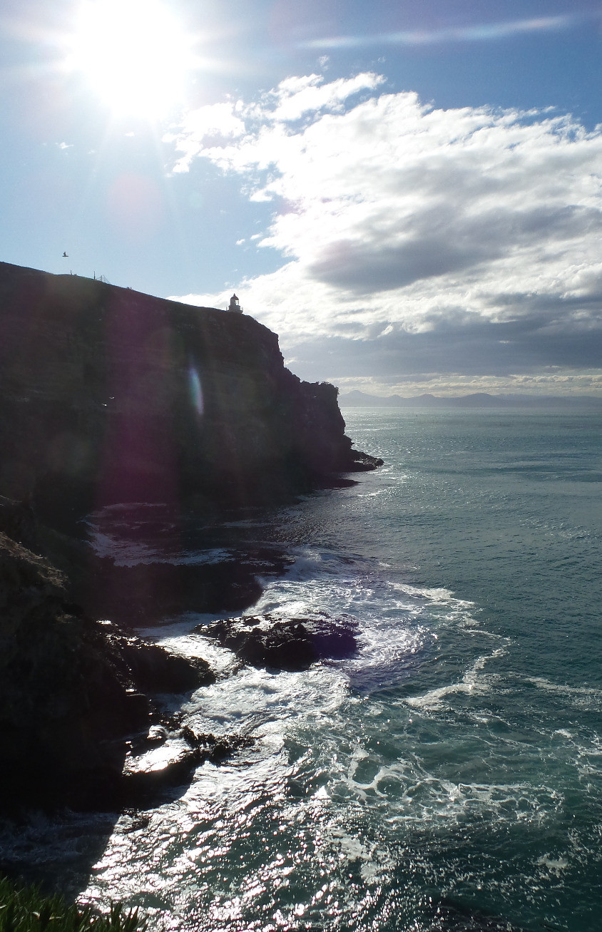 The coastline of the Otago Peninsula