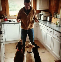 Mark trains three pooches