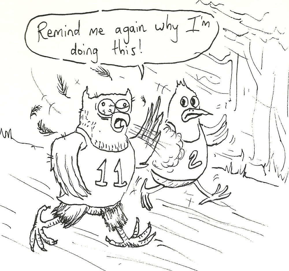 owl marathon runner cartoon illustration