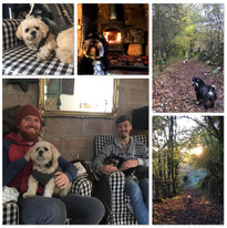 Petsitting in Cromford, Derbyshire