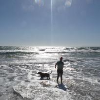 Walking Humphrey in Perth WA
