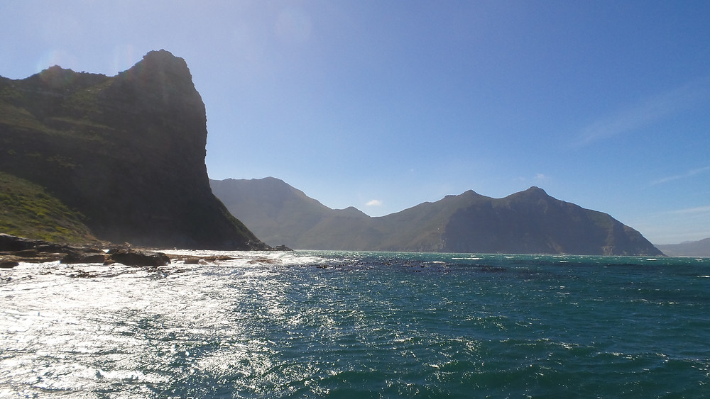 A boat trip in Hout Bay, South Africa