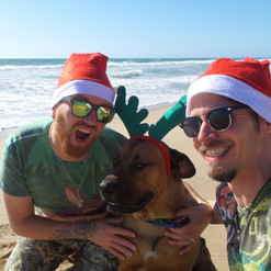 With Humphrey the mastiff cross at Christmas