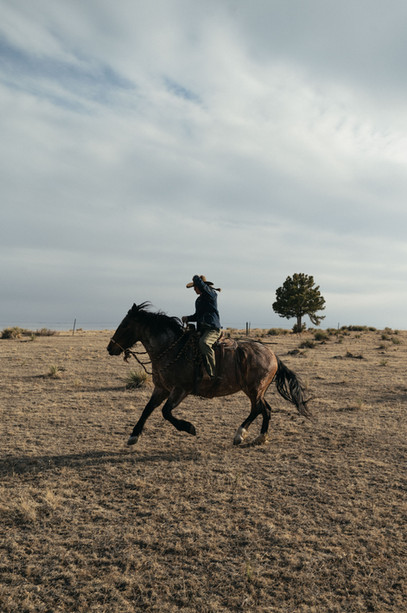 GEMS   Patagonia