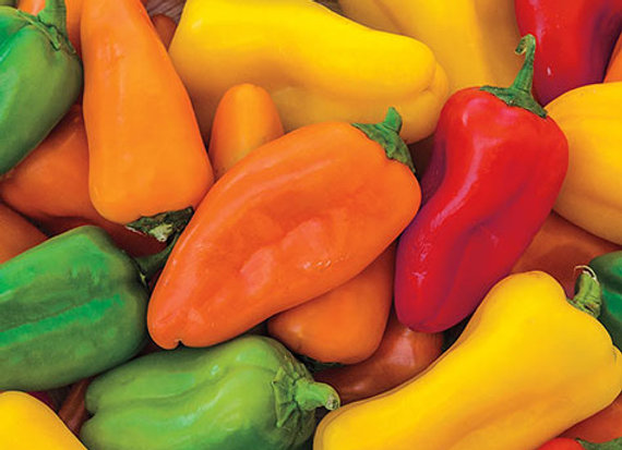 Mini Mixed Peppers, 1# Bag