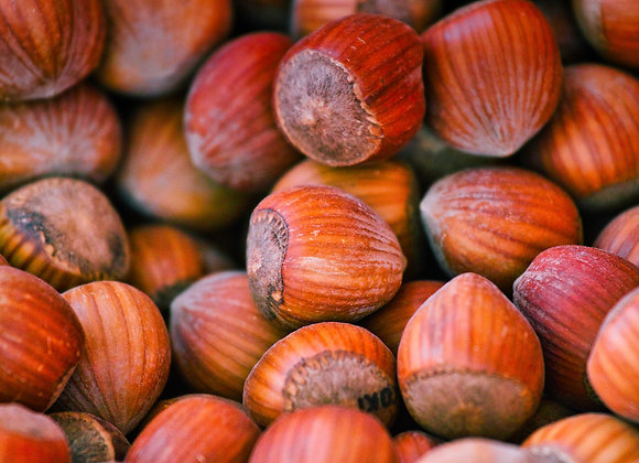 Hazelnuts (In Shell)