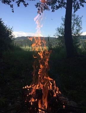 Sommermühlenkinder - Naturschätze und Waldzwergal verbinden sich