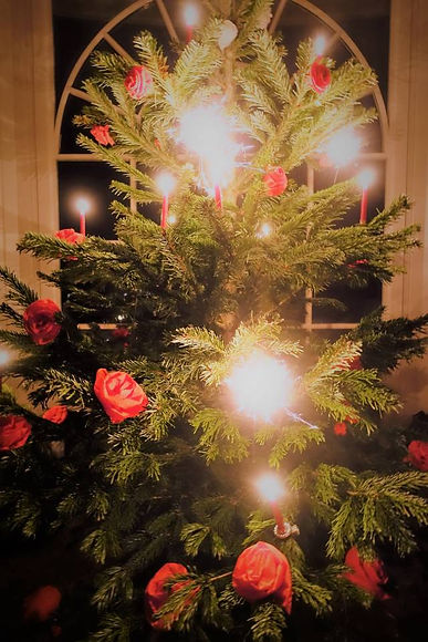 rosenchristbaum_1.jpg