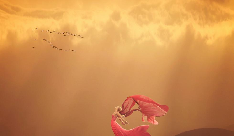 desert fly.jpg