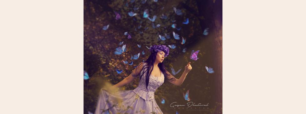 butterfly-gallery.jpg
