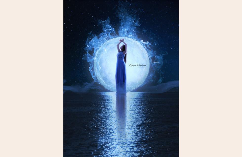 moonlight-gallery.jpg