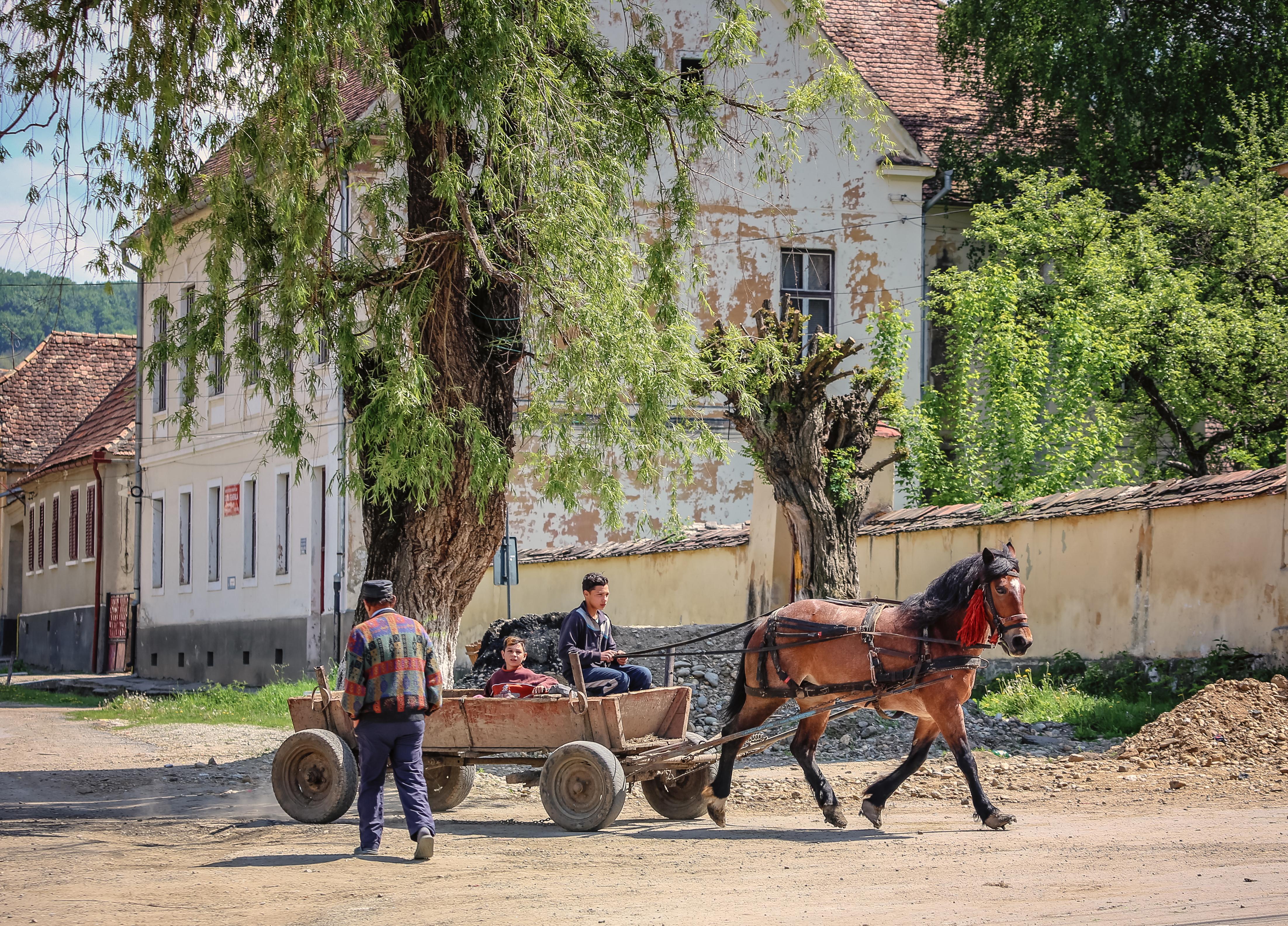 Romania--243