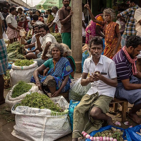 Indien-2353.jpg
