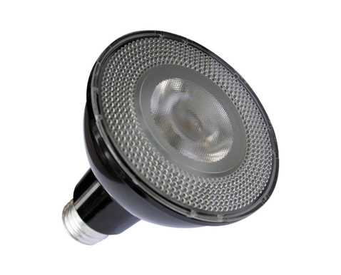US-LED-Lamps-PAR30-Black.jpg