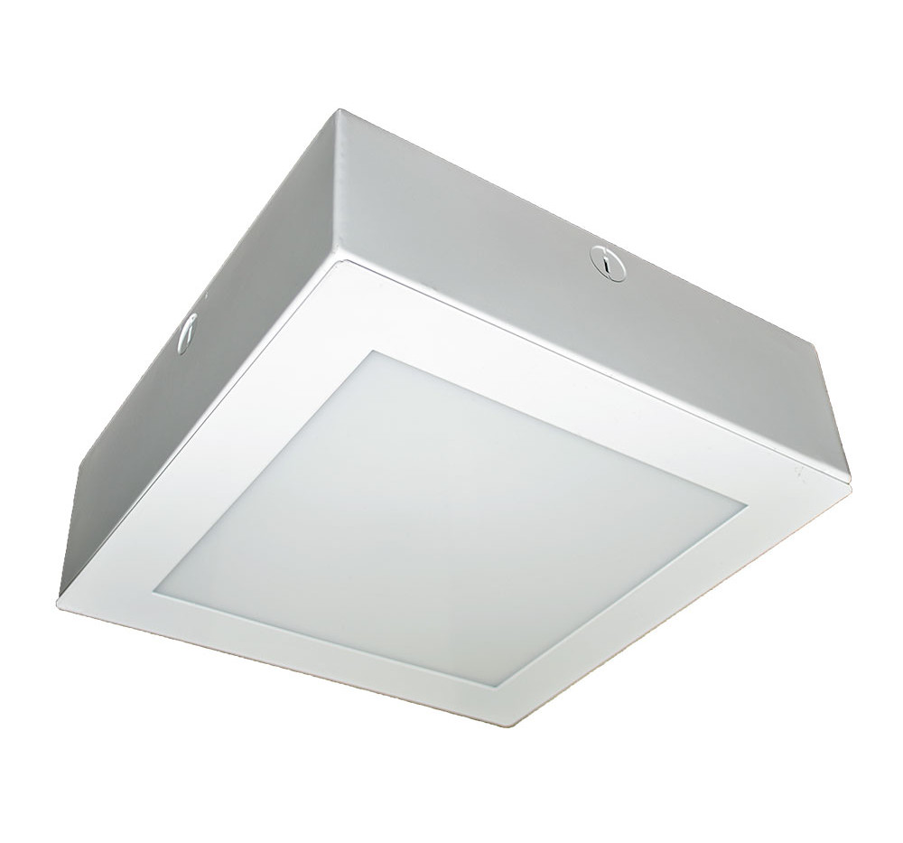 L-Grid®2 EH 1x1 Outdoor LED Soffit Canopy