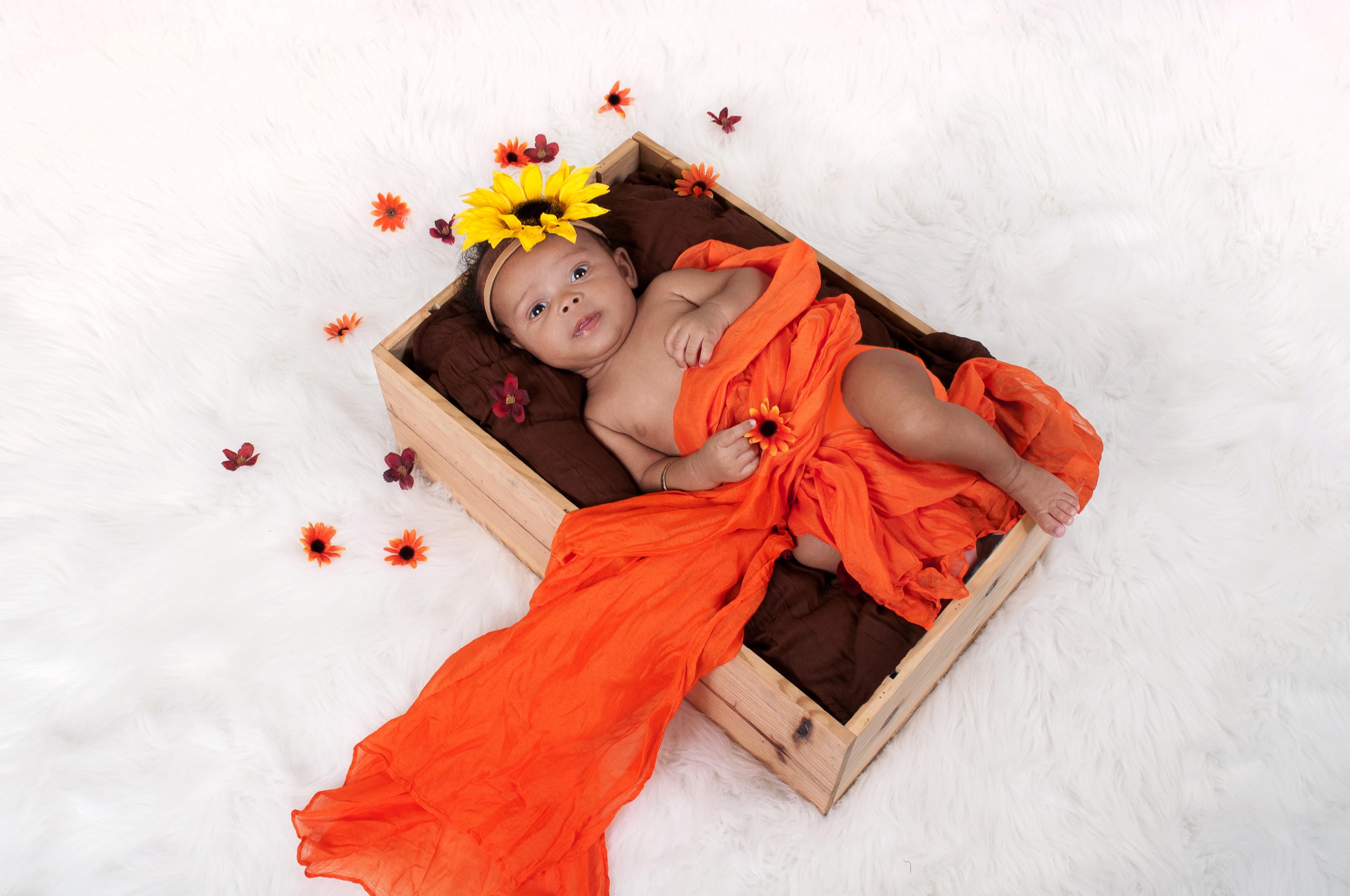 Newborn Baby Photographers MA NY VT