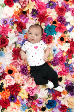 Newborn Photography Pittsfield MA