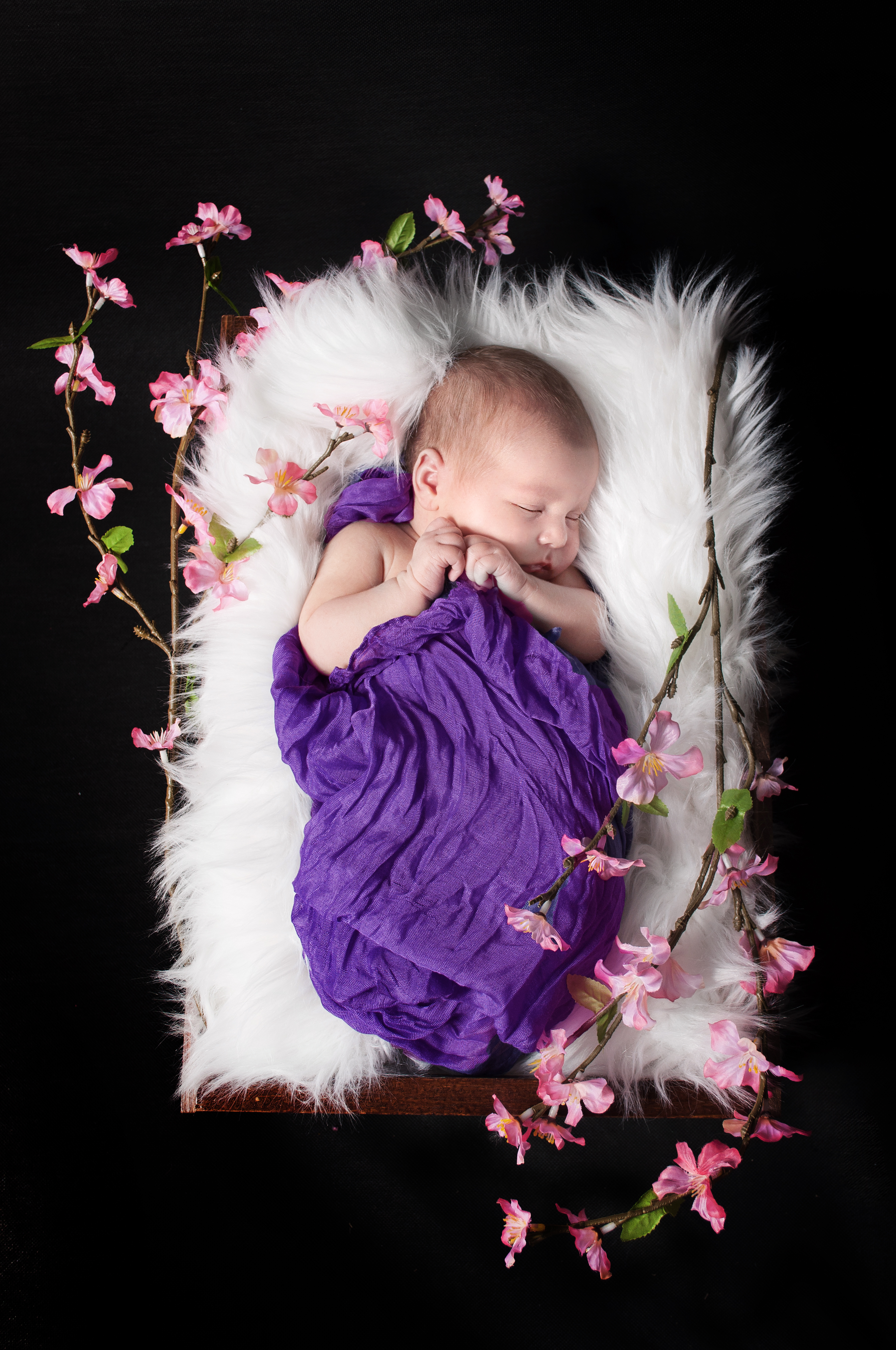Newborn Photographer MA Lenox Lee