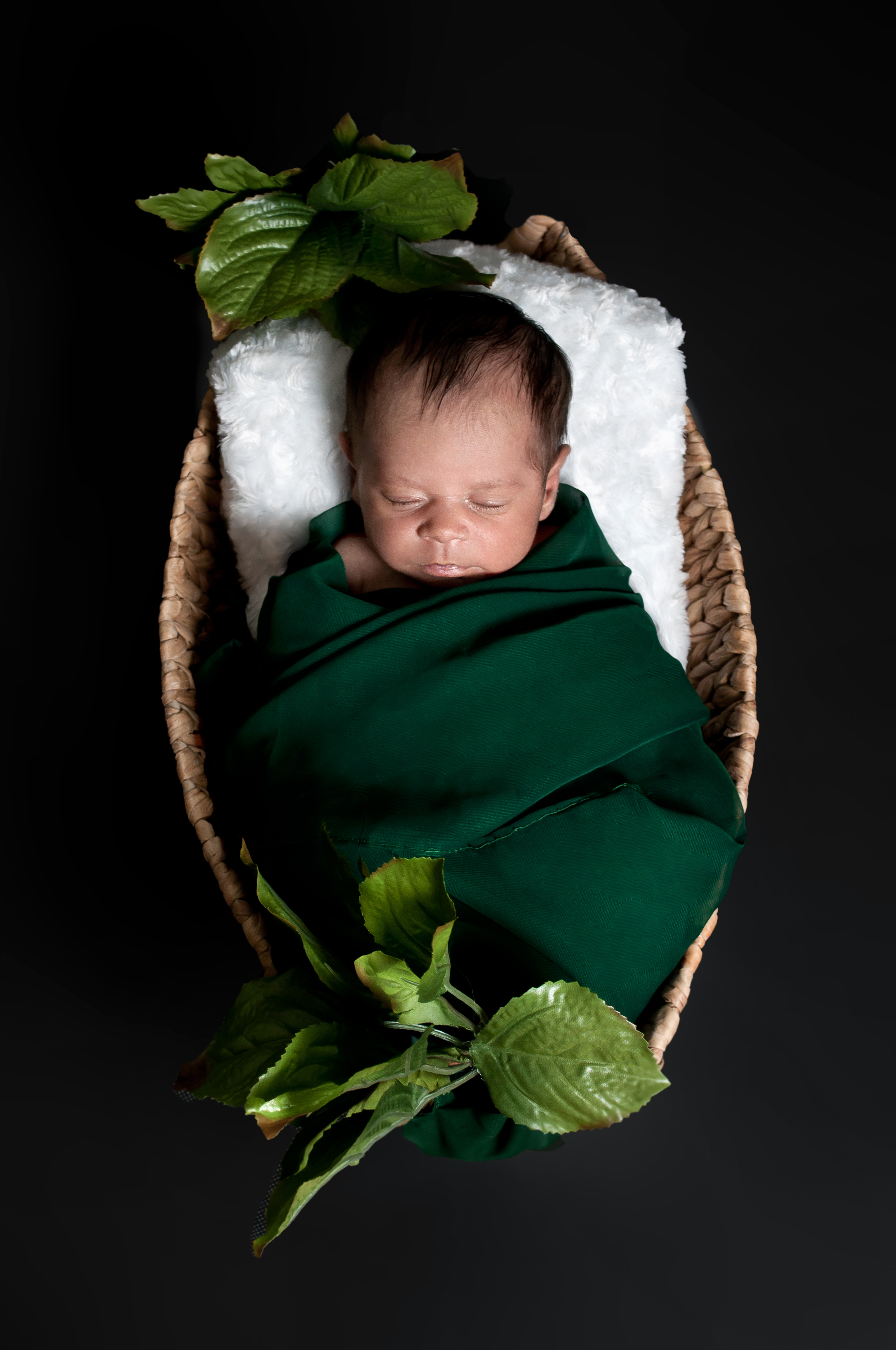Newborn Photography MA Lenox Lee NY