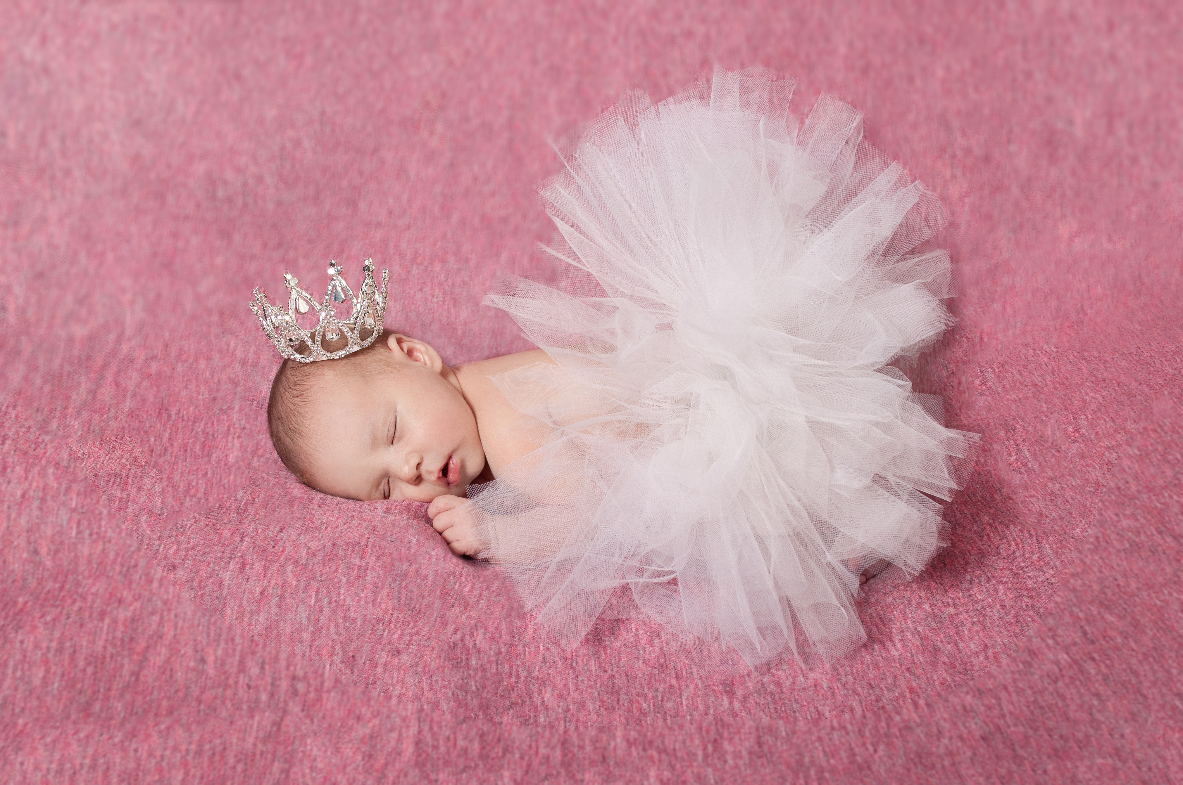 Newborn Photographer Lee Lenox