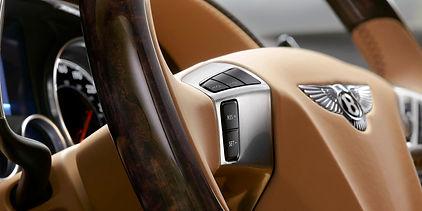 Khamun Veneer Steering Wheel Detail_rgb