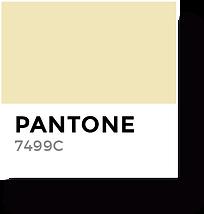 Sazones Color 2.png