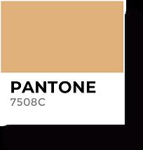 Uncor Color 2.png