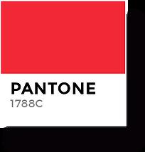 Sazones Color 1.png