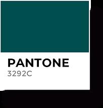 Sante Color 2.png