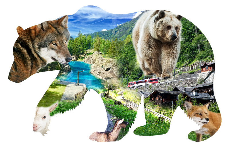 que l'ours.jpg