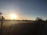 heath 08.03.21 4.jpg