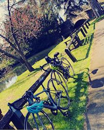 Mary cycling.jpeg