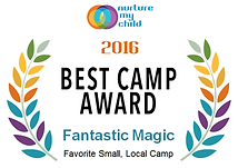 Best Camp Award 2016.png