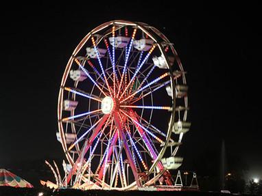 Century Wheel