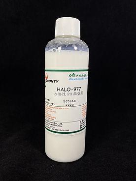 HALO-977.jpg