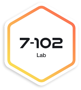 7Flows-7-102-Lab.png
