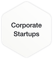 7Flows-Corporate-Startups.png