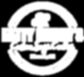 LOGO white logo AZ -13.png