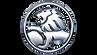 Holden-Logo-600x338 (1).png