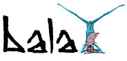 Sage_Header_bala.jpg