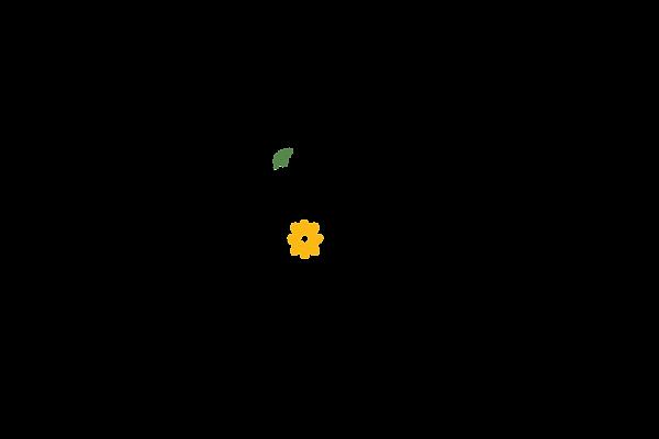 basic bars soap logo